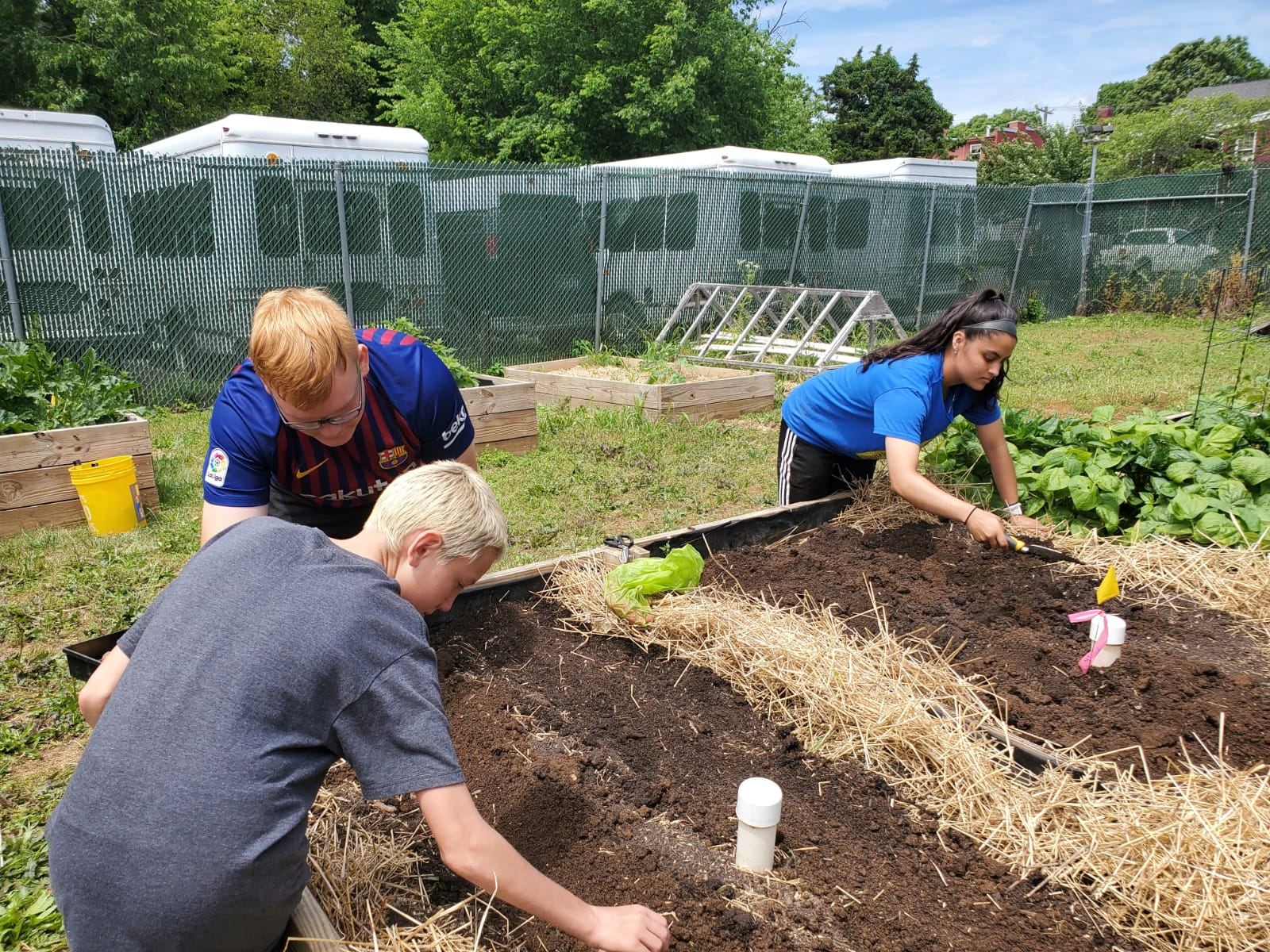 Students planting seeds at the Religious Coalition for Emergency Human Needs Garden