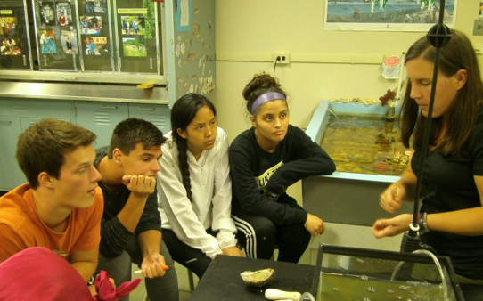 Oyster Lab