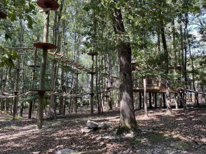 Tree Trekkers field trip