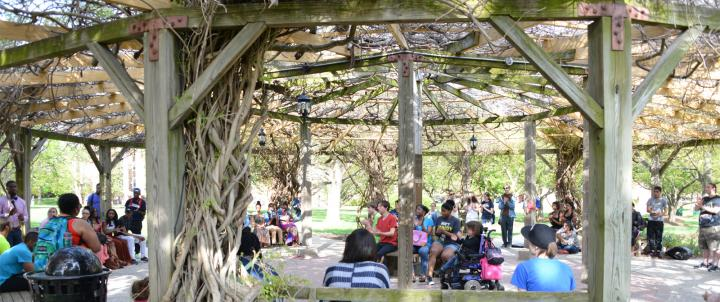 Students gathered in the Pergola