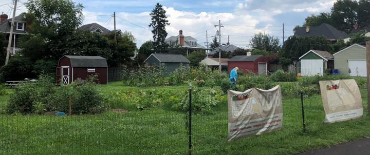 Hood/FMH garden