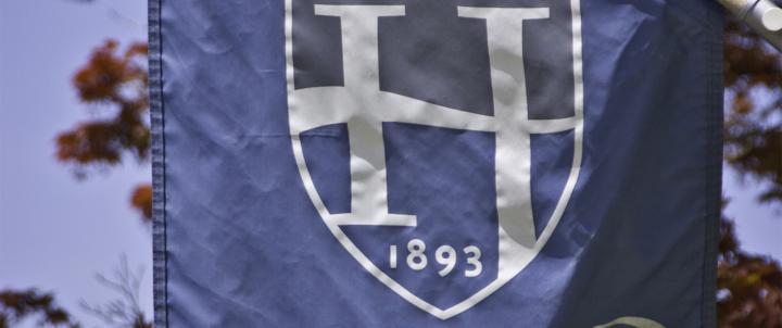 Hood flag